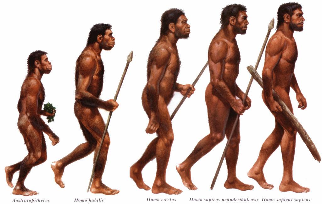 Кто самый разумный на Земле - Homo Sapiens или Человек