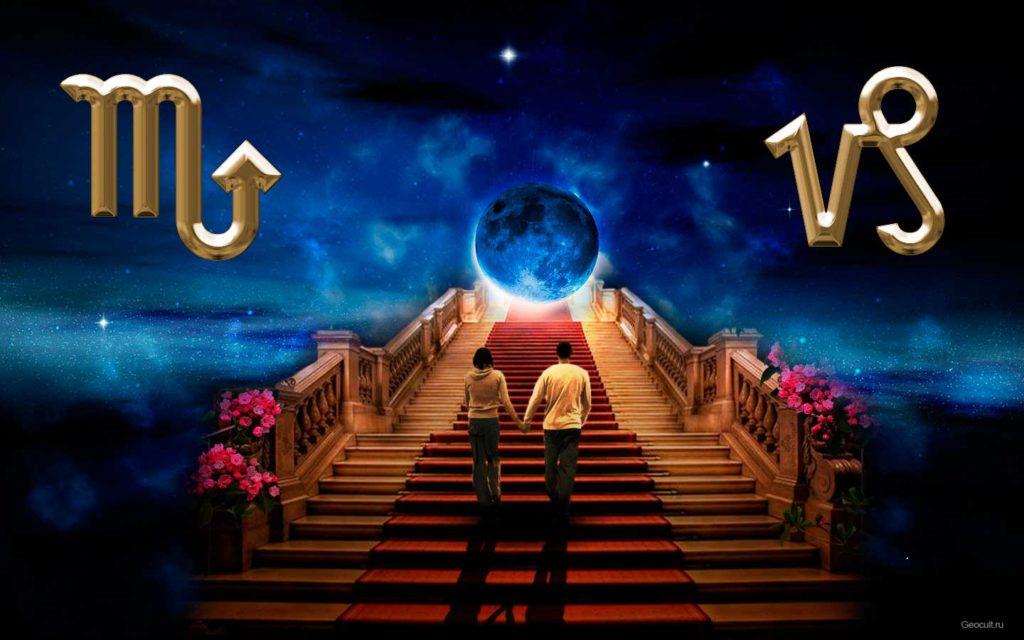 19 ноября кто это по гороскопу-5