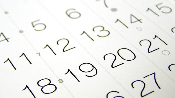 19 ноября кто это по гороскопу-7