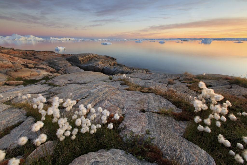 Кому принадлежит остров Гренландия-6